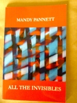 Mandy Pannett's All The Invisibles
