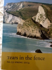 Tears in the Fence 59