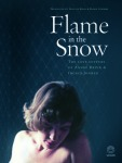 Flame in the Snow: The Love Letters of André Brink and Ingrid Jonker