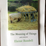 The Meaning of Things: Poems and Prose by Elaine Randell (Shearsman Books)