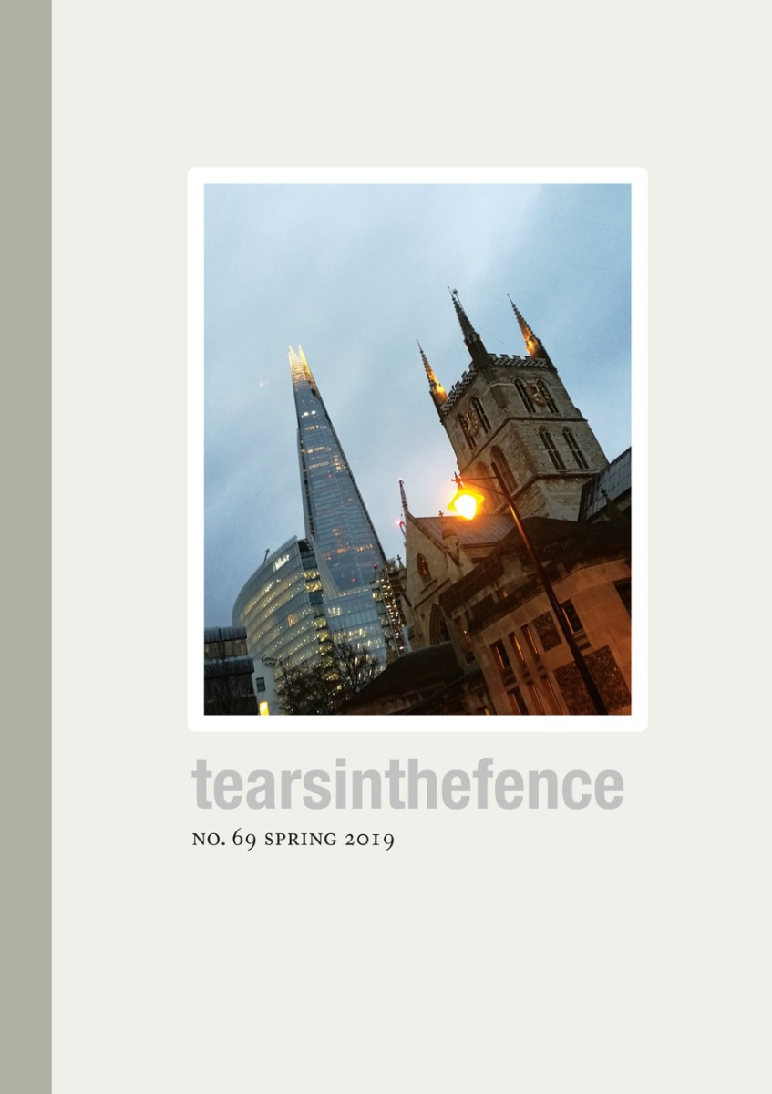 Tears in the Fence   an independent, international literary